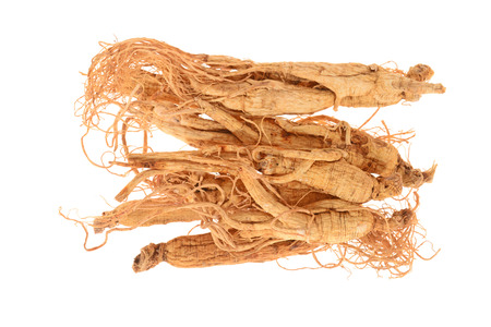 ginseng roots: Chinese Dried Ginseng Roots