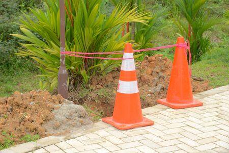 plantar árbol: Plantaci�n de �rboles en curso, para impedir la entrada