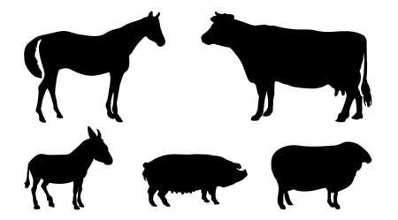 burro: Animales siluetas. Caballo, vaca, burro, cerdo, ovejas. Vector EPS 10.