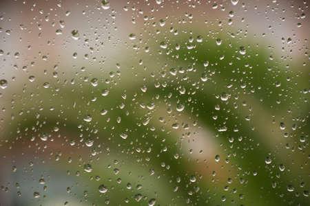 Rain drops on window glass green tree background