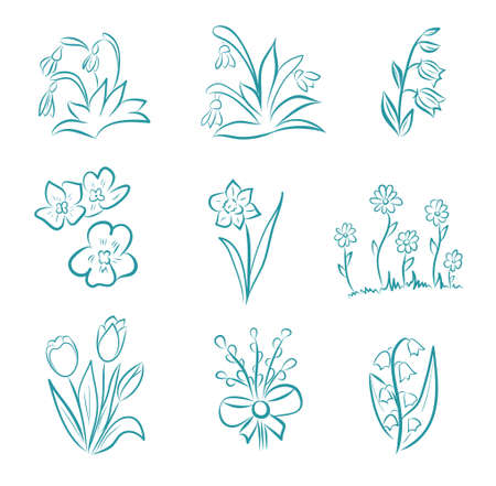 Spring and summer flower collection in doodle style with tulips, narcissus, willow, violet, snowdrop, bell, lily of the valley and cornflowers. Hand drawn vector illustration for Easter