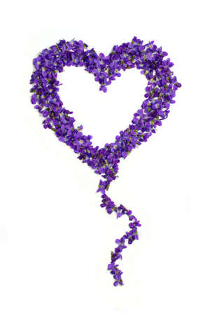 Heart shape balloon flowers. Violets love symbol isolated on white background. Template for greeting card, web design Stock Photo