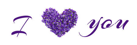 Love you words writen with flowers and letters isolated on white background. Violets love text. Valentines day greeting card Foto de archivo