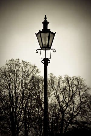 Old style street lantern with trees in background photo