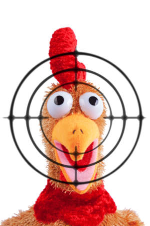 Shouting rooster toy with target on foreground. Isolated over white background. Scared expression. Open beak. photo