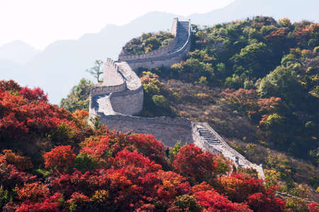 the great wall and the fall: In autumn every year, the red leavies festival will be held in Beijing, and many people is crowding to the suburbs to watch the red leavies Badaling is one of the best place for watching