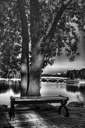 b w: Bench, tree,lake and bridge B W  Stock Photo
