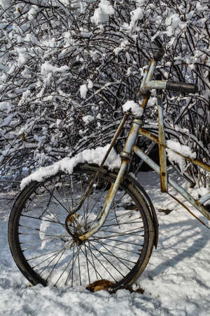 A pedicab tyre covered by the snow photo