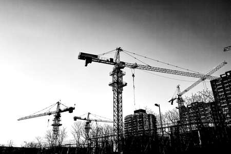 b w: Cranes in the construction site  B W  Stock Photo