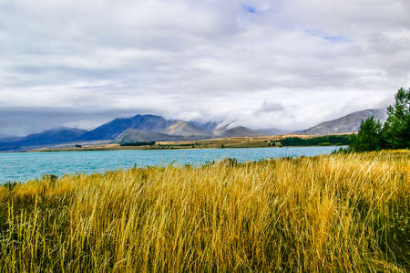 tekapo: Scenery of Tekapo lake, New Zealand