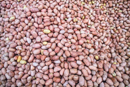 shelled: Shelled peanuts