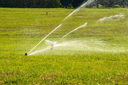 sprinkle system: Sprinkler at the lawn