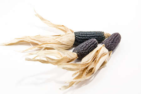 Dry corn isolated on white background.