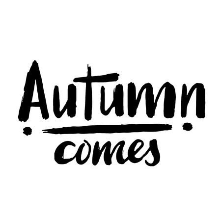 Autumn hand drawn lettering for poster, banner, logo, icon for seasonal event, sales, promo, holiday, fair site, meeting, fall party. Quote Autumn comes . Modern typography without background