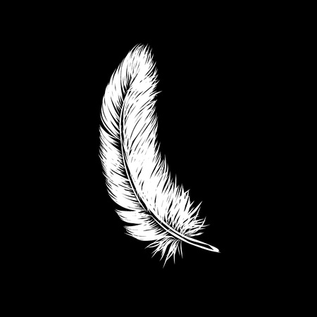 Vector hand drawn line art style white feather for poster, banner, logo, icon. Fluffy feathers on black background in realistic style. Chalkboard concept. Lightweight sketch illustration, for pattern.  イラスト・ベクター素材