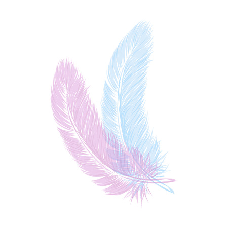 Vector hand drawn line art style feather for poster, banner, logo, icon. Fluffy feathers on transparent background in realistic style. Lightweight sketch illustration, for patterns, ink drawing. Logos