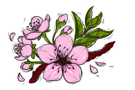 Cherry Blossom Vector Lineart Illustration. Sakura Spring hand drawn Sketch for seasonal promo, sale, romantic greeting card, poster, banner, printing. Floral pattern isolated without background.