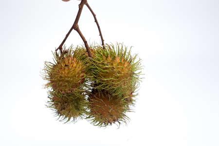 Tropical fruit called rambutan