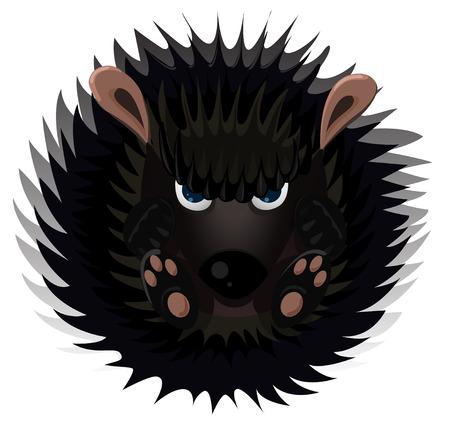 Hedgehog isolated on white. Vector cartoon illustration.