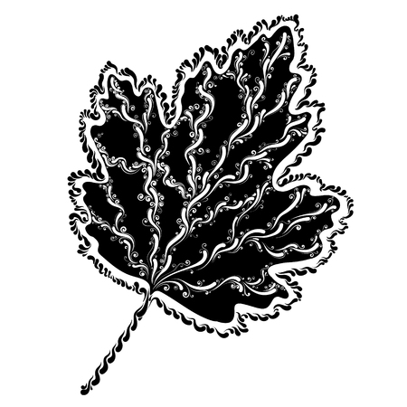Decorative graphic leaf in silhouette illustration.