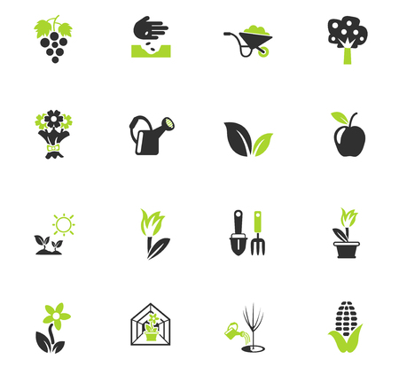 plants measuring tools web icons for user interface design