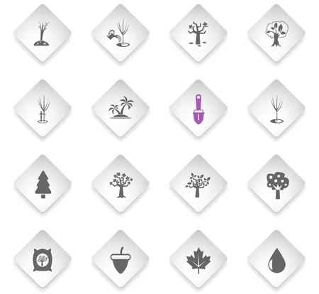 trees measuring tools flat rhombus web icons for user interface design Ilustração