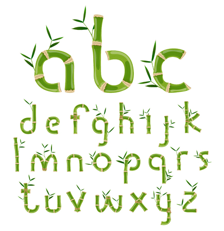 Bamboo eco alphabet, exotic tropical vector font