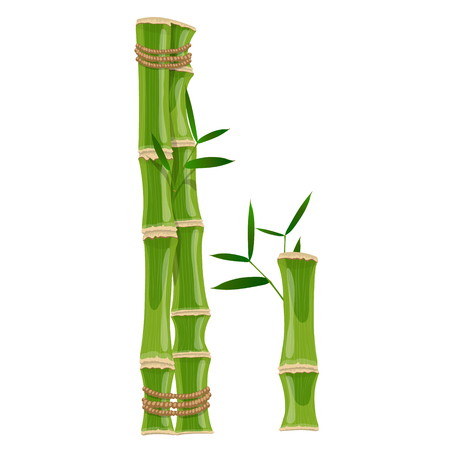 Bamboo letter I with young shoots with leaves, eco vector font