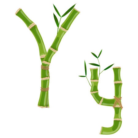 Bamboo letter Y with young shoots with leaves, eco vector font