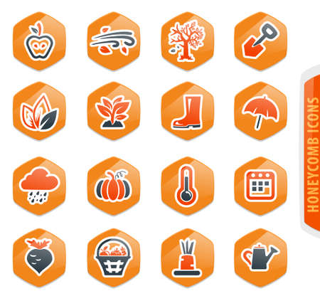 Autumn color vector icons for user interface design 向量圖像
