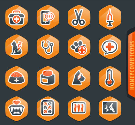 Veterinary clinic icon set for web sites and user interface  イラスト・ベクター素材