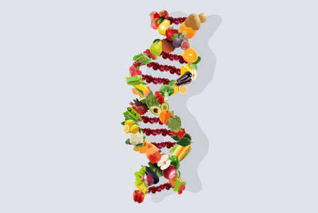Nutrigenetics concept illustration dna strand vegetables and fruits