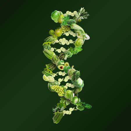 Nutrigenetics concept DNA strand made with fresh vegetables and fruits Banque d'images - 119797042