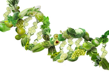 Nutrigenetics concept DNA strand made with fresh vegetables and fruits Banque d'images - 119797044