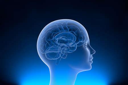 Neuralink synaps neural network linking computer - human communication. Neuralink neural network is linking computer - human communication in a new dimension.