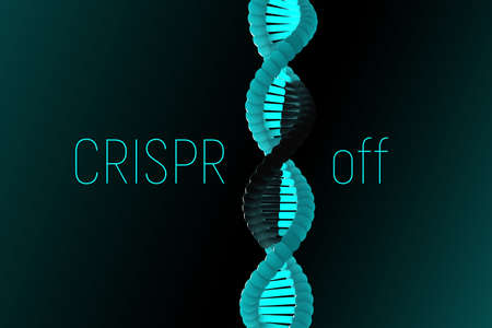 3D illustration of new reversible CRISPR method that can control gene expression while leaving underlying DNA sequence unchanged by switching on and off