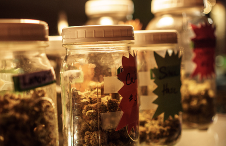 Jars of cannabis on display.