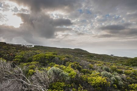 Landscape of Cape Dutch Style Cottage in De Hoop Nature Reserve South Africa photo