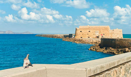 two pigeons kissing in warm sunlight with Koules Fortress at background against blue sky, Heraklion, Crete, Greece Editorial