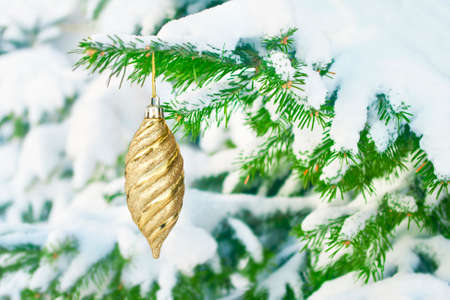 Shiny gold christmas ornament hanging on fit tree branch covered in snow outside the house on winter day