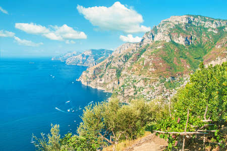 view of small farm with olive trees, ripe grapes and mandarins surrounded by sea and mountains, Positano, Amalfi coast, Italy