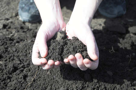clod: clod of earth in the hands of the farmer on soil background Stock Photo