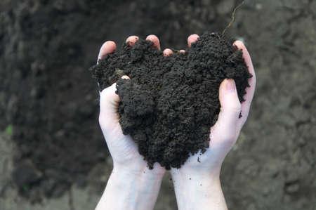 Hand holding soil, dry soil on background photo