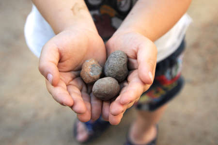 put forward: Three round stones in the hands of a child