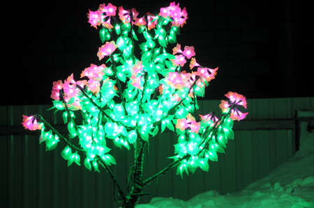 diode: light-emitting diode tree at night in winter
