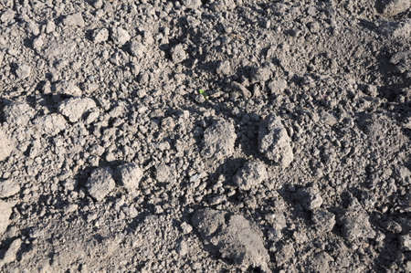 ploughed: ploughed unplanted brown field with blocks of soil Stock Photo