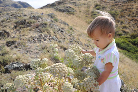 enquire: Little girl on the hill looking on the flowers Stock Photo