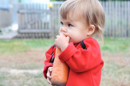 chomp: Caucasian child scrunching big orange carrot outdoor