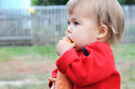 chomp: Caucasian baby biting  big orange carrot outdoor
