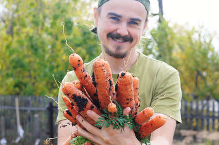 dungy: Smiling happy agronome offering carrots in bunch